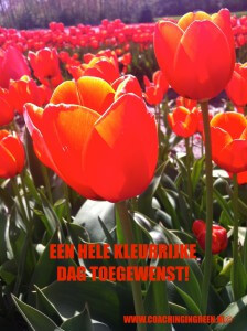 www.coachingingreen.nl
